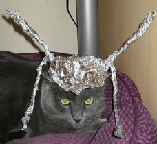preparing for alien onslaught